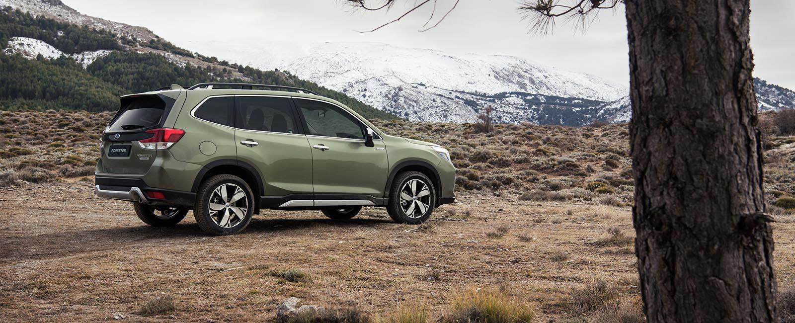 Subaru Forester i fjellandskap